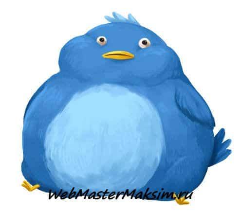Что писать в Твиттере - как стать интересным собеседником. Что такое Твиттер?