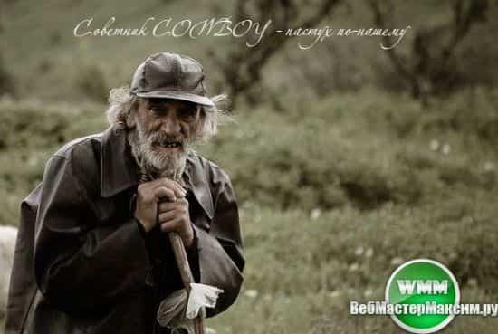советник cowboy